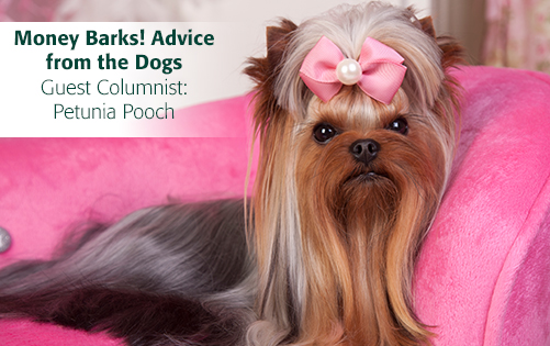 Read Money Barks Advice from the Dogs