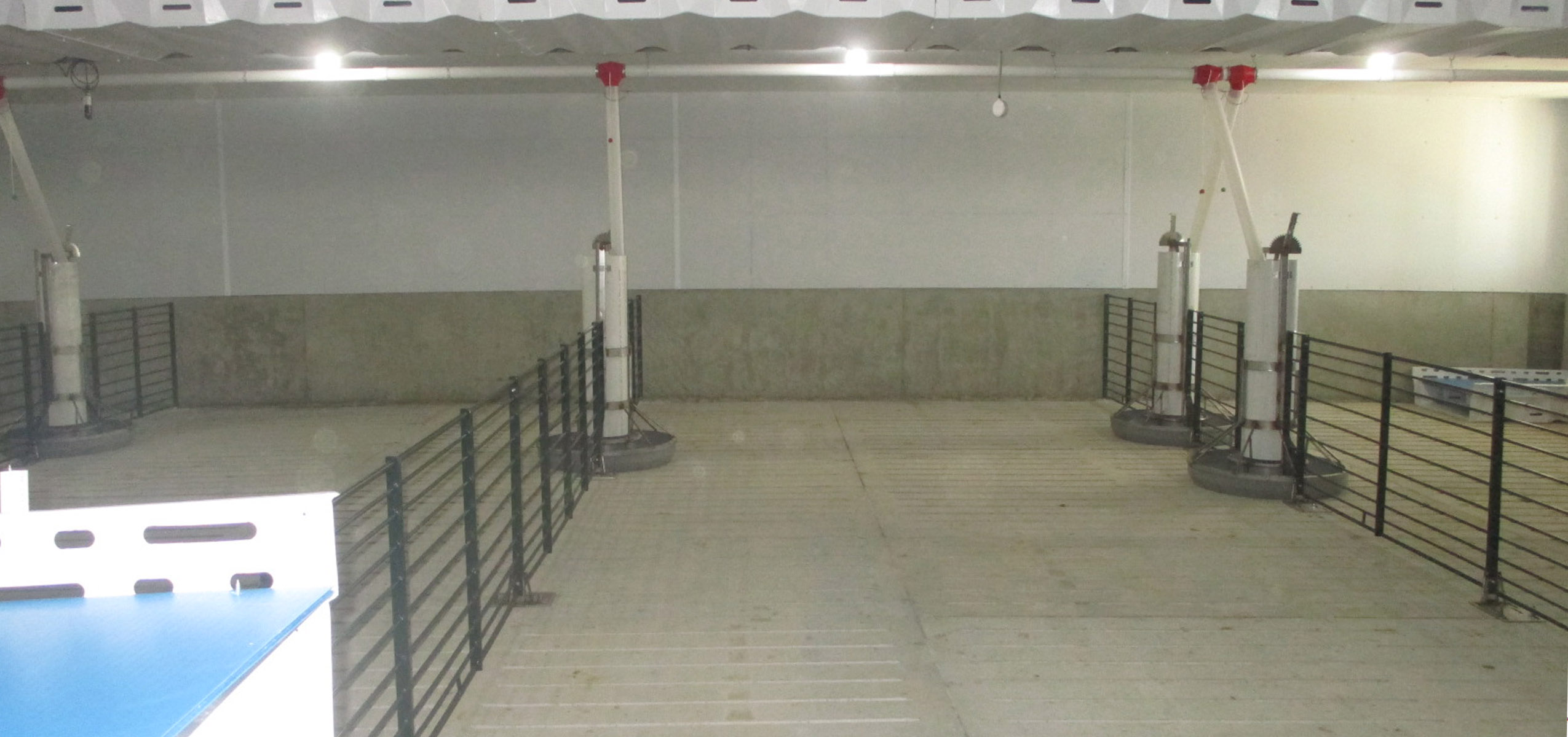photo of empty finishing room that will house swine